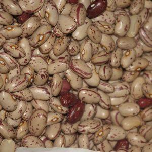 legumbres de la armuña